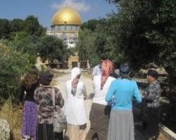 «Mujeres para el Tercer Templo»